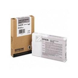 Origineel Epson T6029 Inkt Light Zwart Standaard Capaciteit 110ml 1 Stuk